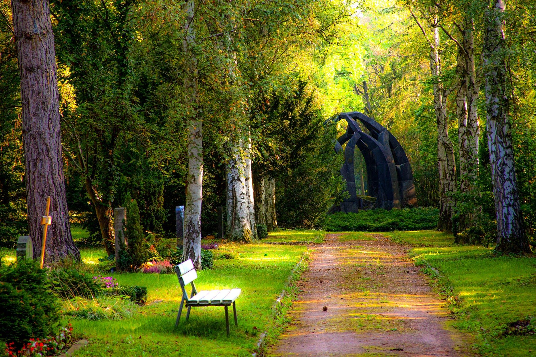 Træer i have